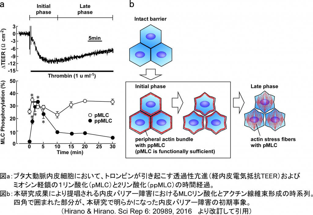 日生誌ScienceTopics・日本語版
