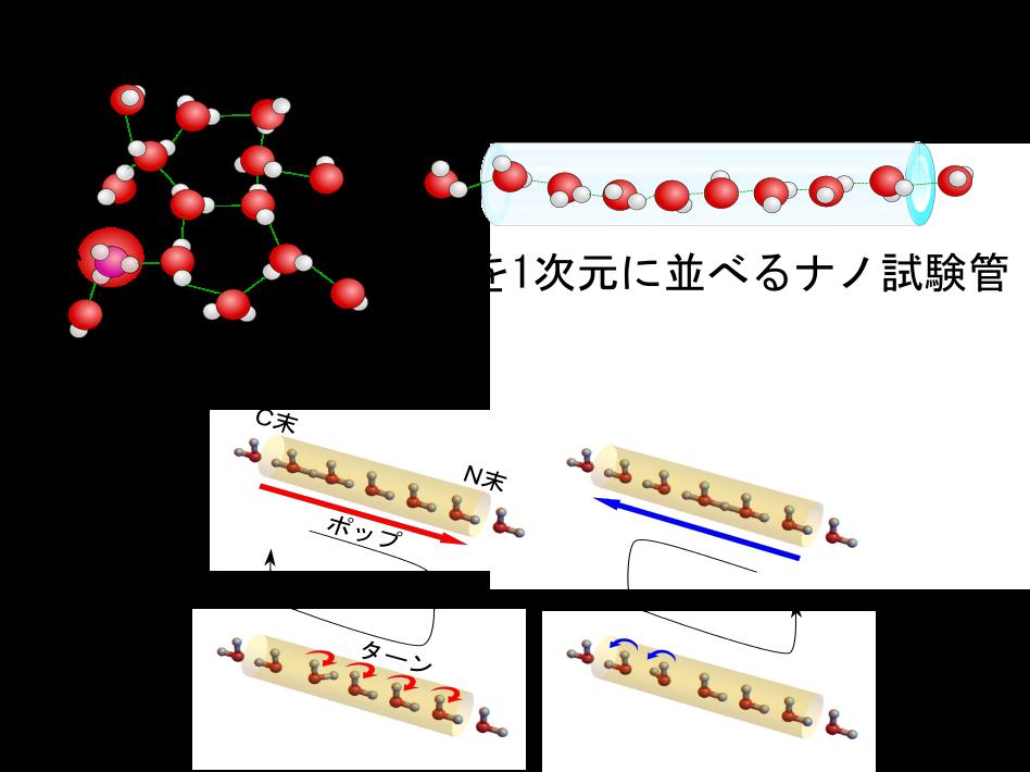 3次元vs1次元水