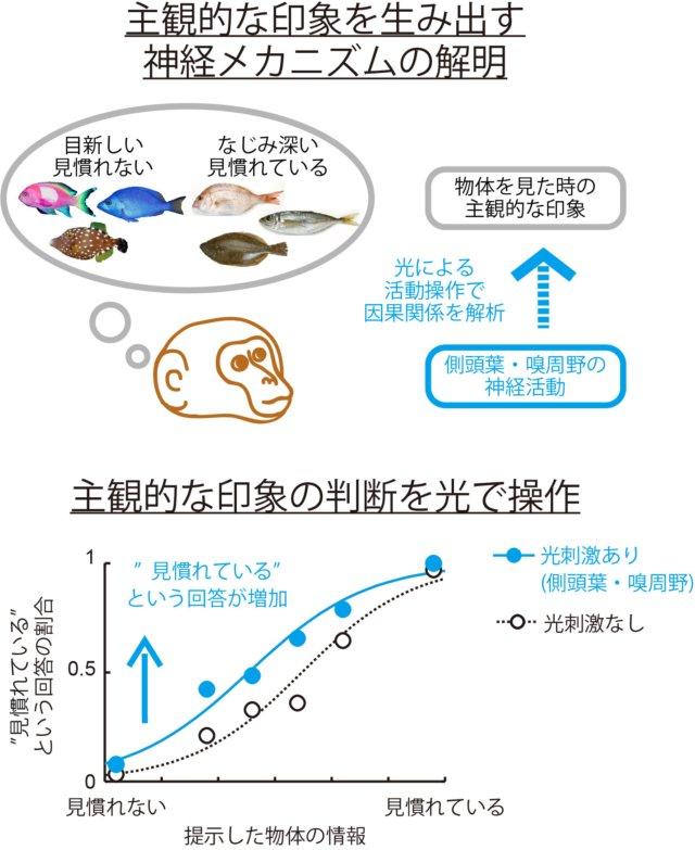 図_日本語_KT171030